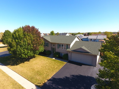 McHenry Single Family Home For Sale: 504 Wimbleton Trail