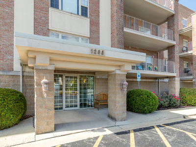Elmhurst Condo/Townhouse For Sale: 1200 S Prospect Avenue #208