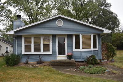 Warrenville Single Family Home For Sale: 3s565 Elizabeth Avenue