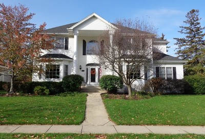 Palatine Single Family Home For Sale: 392 North Pondview Drive