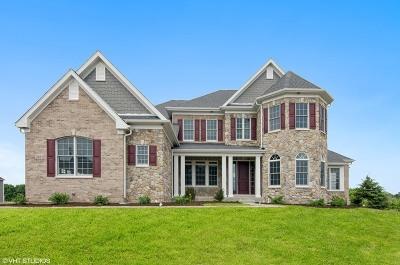 Batavia Single Family Home For Sale: 708 Brady Way