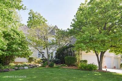 Bartlett Single Family Home For Sale: 1581 Far Hills Drive