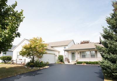 Woodstock Single Family Home For Sale: 291 Prairie Ridge Drive