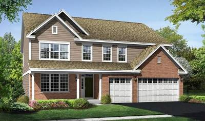 Naperville Single Family Home For Sale: 3 Heatherfield Circle