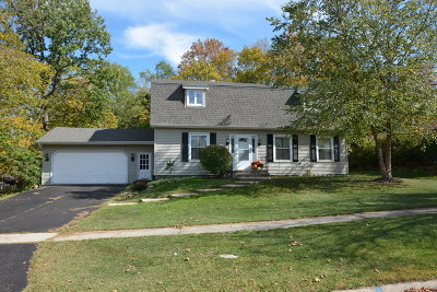 Frankfort Single Family Home For Sale: 817 Overlook Drive