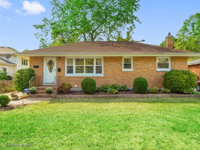 Downers Grove Single Family Home For Sale: 4338 Stanley Avenue