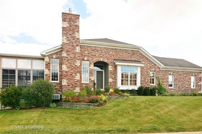 Palatine Condo/Townhouse Contingent: 1271 South Falcon Drive
