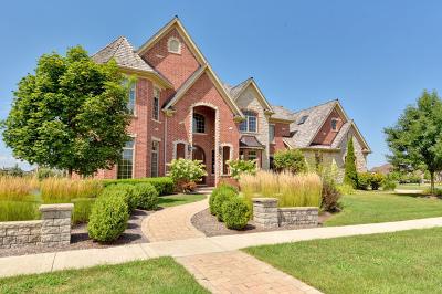 St. Charles Single Family Home For Sale: 39w179 Longmeadow Lane