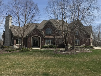 Homer Glen Single Family Home For Sale: 18021 South Hunt Club Drive