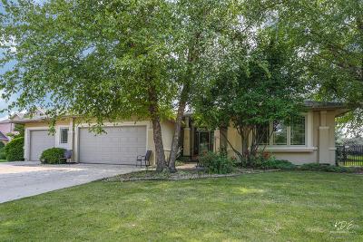Plainfield Single Family Home Price Change: 13559 Sharp Drive