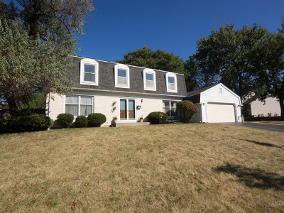 Palatine Single Family Home For Sale: 1010 West Peregrine Drive