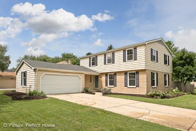 Naperville Single Family Home For Sale: 1021 Kennebec Lane