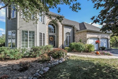 St. Charles Single Family Home For Sale: 6n619 Foley Lane