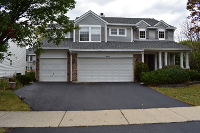 Naperville Single Family Home For Sale: 2603 Flagstone Circle