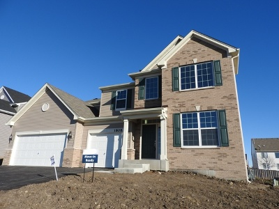 Joliet Single Family Home For Sale: 1808 Oxford Way