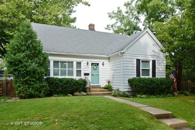 Barrington Single Family Home For Sale: 446 North Cook Street