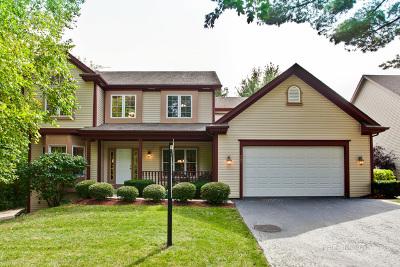 Crystal Lake Single Family Home For Sale: 587 Glenn Rdg