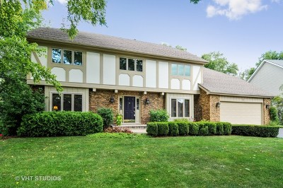Naperville Single Family Home For Sale: 826 Chancellor Court