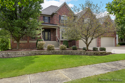 Naperville Single Family Home For Sale: 3619 Hector Lane