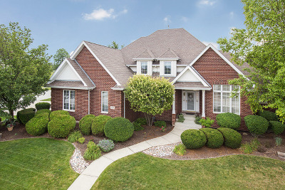 Orland Park Single Family Home For Sale: 16741 Muirfield Drive