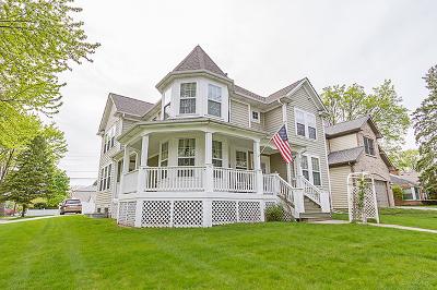 Palatine Single Family Home For Sale: 262 South Hale Street