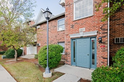 Lake In The Hills Condo/Townhouse Contingent: 1360 Cunat Court #1A