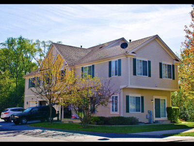 Fox Lake Condo/Townhouse For Sale: 665 Windsor Drive #D