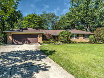 Naperville Single Family Home For Sale: 1010 Sir Barton Court