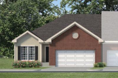 Oswego Condo/Townhouse For Sale: 219 Dorset Avenue
