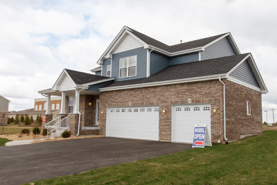 New Lenox Single Family Home For Sale: 2421 Dundee Drive