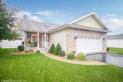 Steger Single Family Home For Sale: 174 Cedarwood Drive