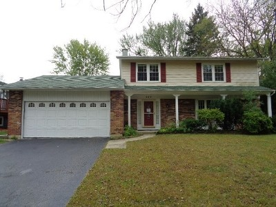 Bolingbrook Single Family Home For Sale: 407 Langford Drive