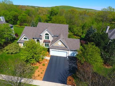 Geneva Single Family Home For Sale: 742 Fox Run Drive