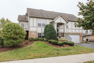 Lake Zurich Condo/Townhouse For Sale: 130 Rosehall Drive