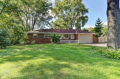 Downers Grove Single Family Home For Sale: 8230 Highland Avenue