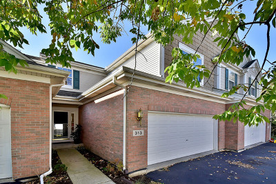 Batavia Condo/Townhouse For Sale: 313 Wolcott Lane