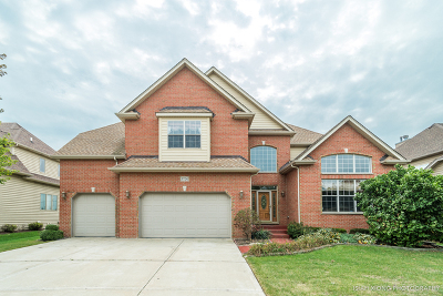 Naperville Single Family Home For Sale: 3724 Ryder Court