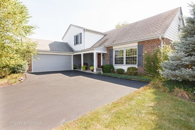 Palatine Single Family Home For Sale: 849 West Partridge Drive