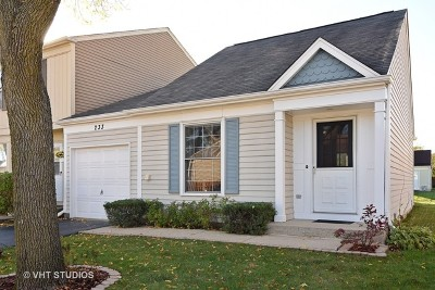 Palatine Condo/Townhouse New: 233 West Cherrywood Drive