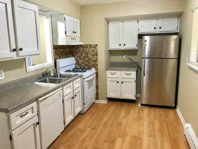 Crystal Lake Rental For Rent: 372 Pierson Street #E