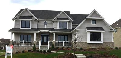 Elgin Single Family Home For Sale: 3669 Broadleaf Avenue