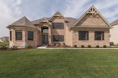 Elgin Single Family Home For Sale: 3689 Bellamere Lane