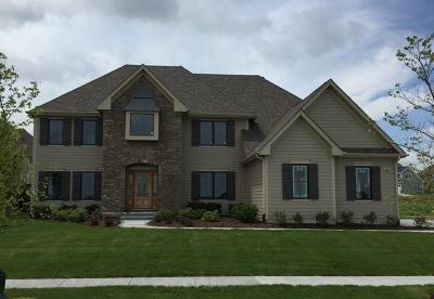 Elgin Single Family Home For Sale: 3683 Bellamere Lane
