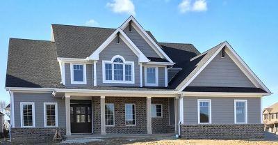 Elgin Single Family Home For Sale: 3709 Heathmoor Drive