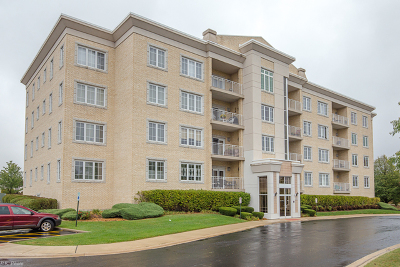 Orland Park Condo/Townhouse For Sale: 9730 West Koch Court #4A