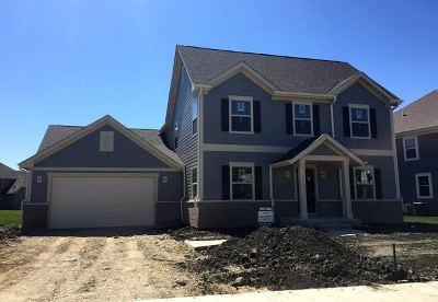 Elgin Single Family Home For Sale: 791 Richwood Avenue