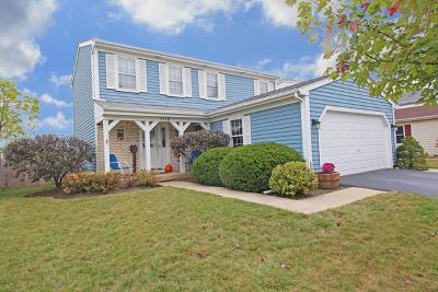Carol Stream Single Family Home For Sale: 1115 Evergreen Drive