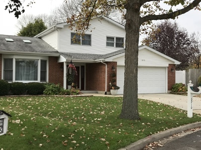 Downers Grove Single Family Home For Sale: 6910 Robey Avenue