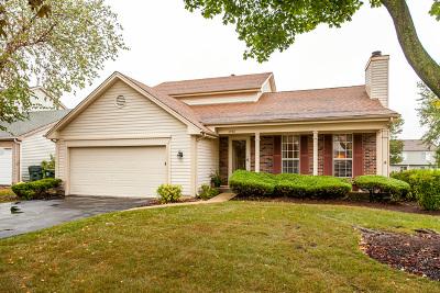 Mundelein Single Family Home For Sale: 1238 Regent Drive