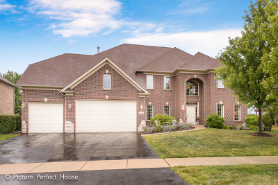 Bolingbrook Single Family Home Contingent: 1859 Pampas Circle